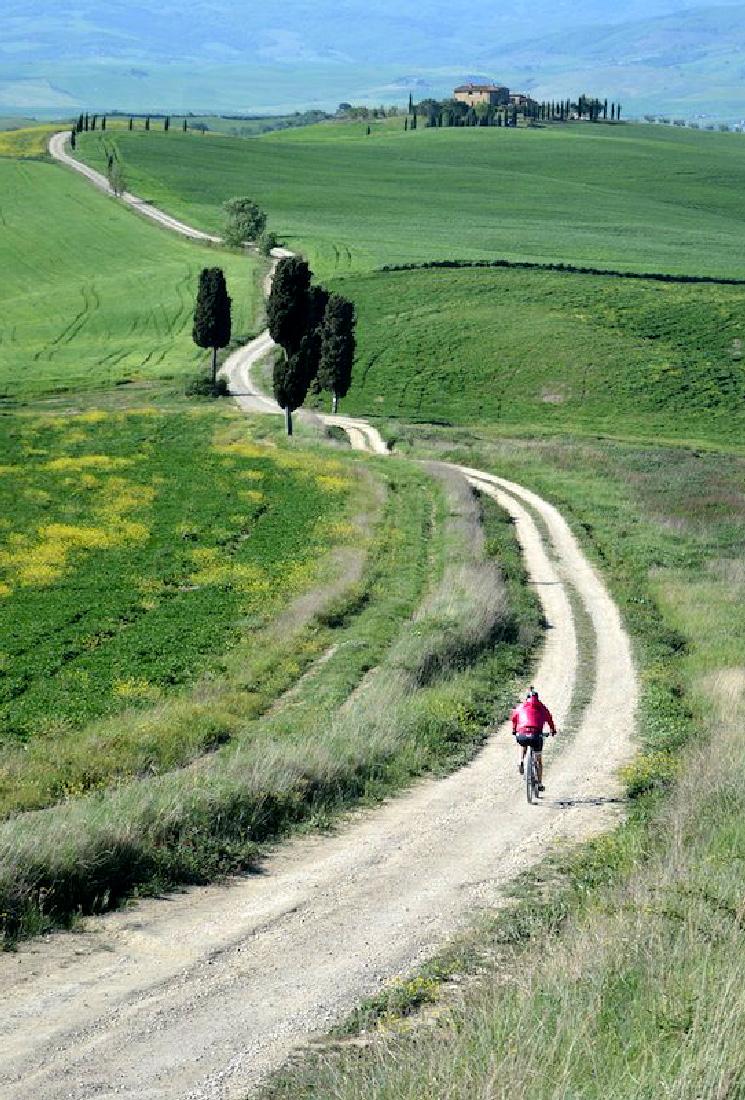 http://www.villalasciolta.it/wp-content/uploads/2016/02/cicloturismo-toscana.jpg