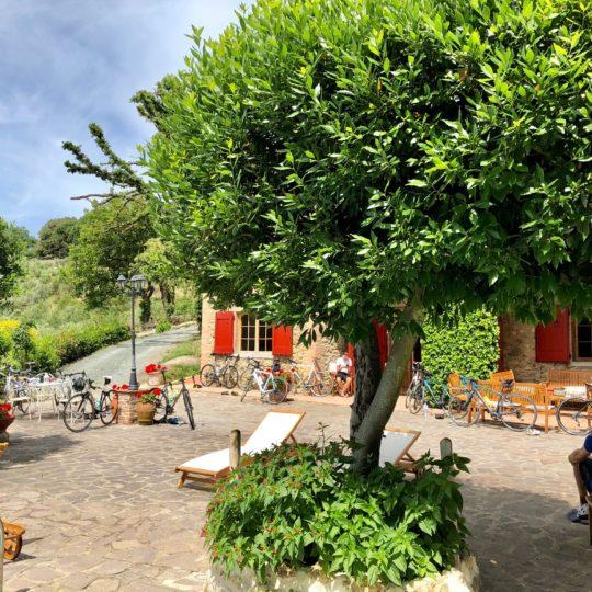 http://www.villalasciolta.it/wp-content/uploads/2016/04/villa-la-sciolta-gambassi10-540x540.jpg