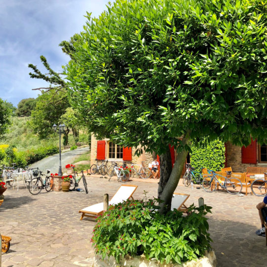 https://www.villalasciolta.it/wp-content/uploads/2019/12/villa-la-sciolta-gambassi-garden2-540x540.jpg